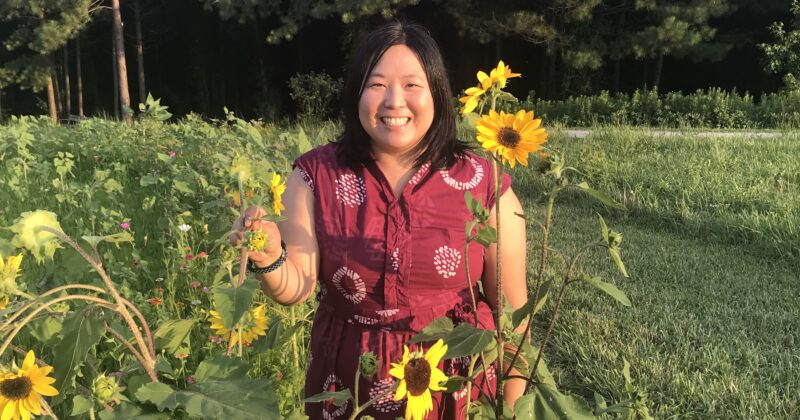 Melissa Lam-McCarthy standing in a field of sunflowers